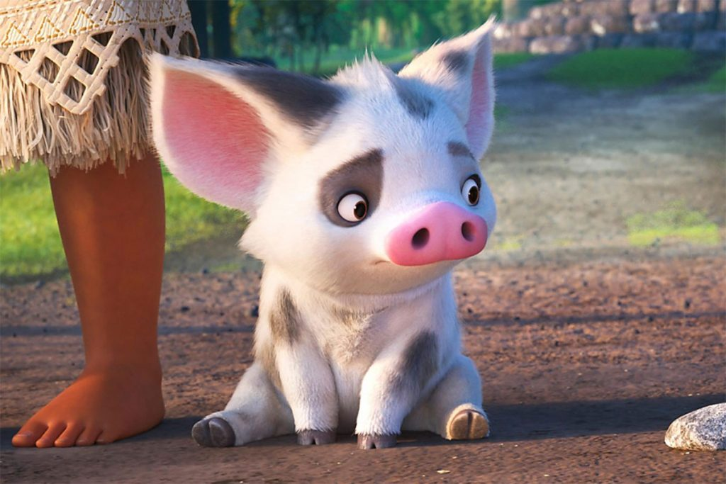 Disney+ Pua from Moana